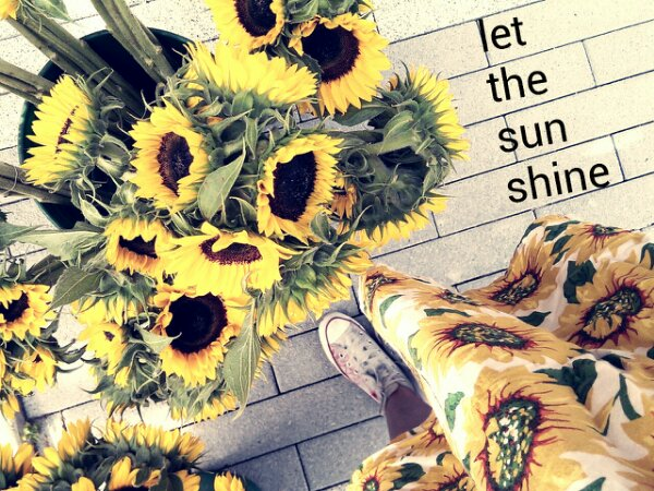 If I were a flower, I'd be a sunflower