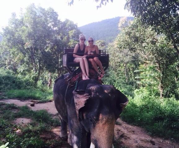 Maesa Elephant Camp in Chiang Mai, Thailand