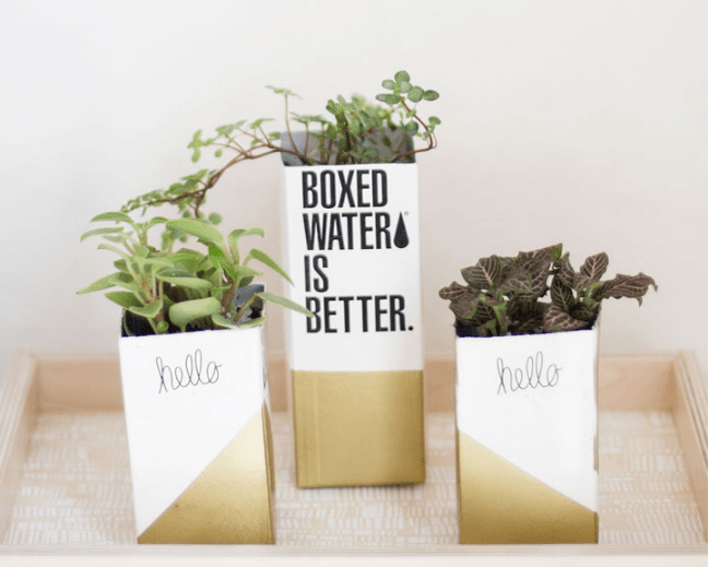 kaylee, the blondielocks, planters, blogger, DIY, boxed water