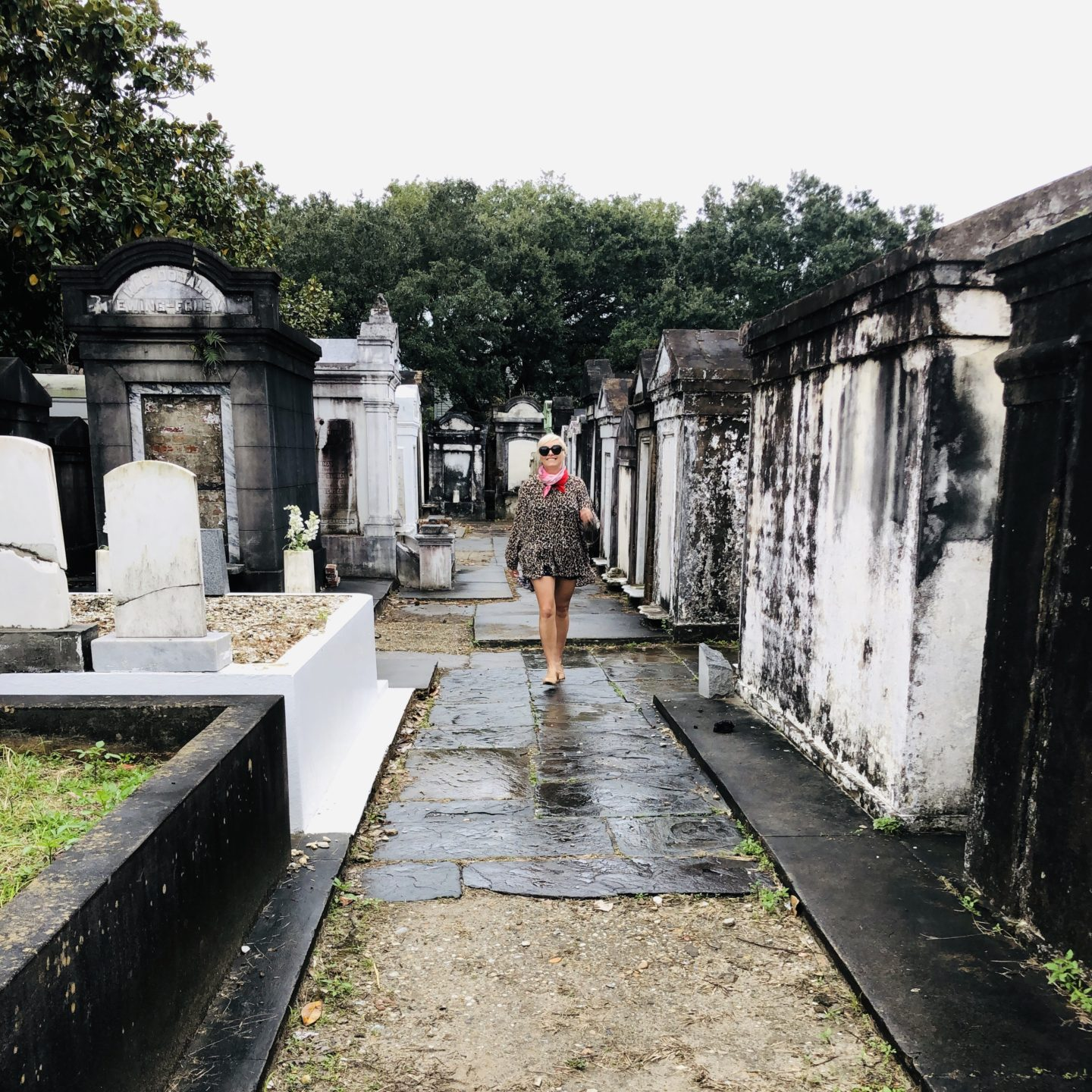 NOLA, lafayette, cemetery, Louisiana, painter, magazine street, travel, pink, bright colours, artist, casie stewart, blogger, travel blogger